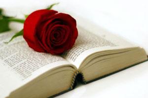 23 de abril, Sant Jordi y día mundial del libro