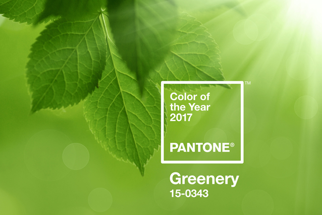 Greenery, color Pantone 2017