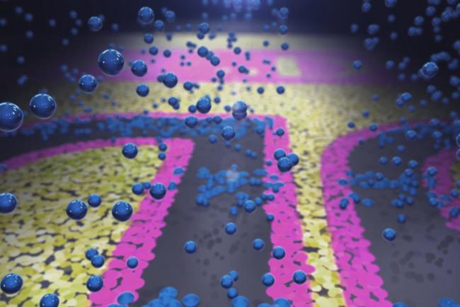ALTANA adquiere tecnología Landa Metallography