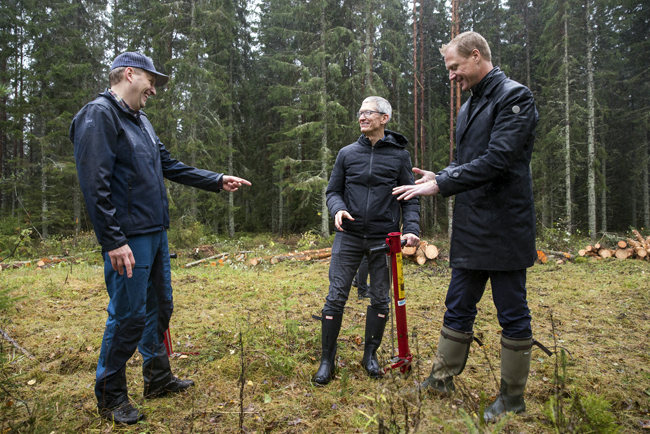 Apple's Tim Cook plants trees at Iggesund, acknowledges Holmen's climate-smart efforts