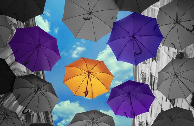 Kodak agrega tinta violeta y amplía la conectividad al software KODAK Proofing Software