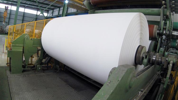 El 98% de la madera y el 70% del papel para reciclar que utiliza como materia prima la industria papelera española son de procedencia local