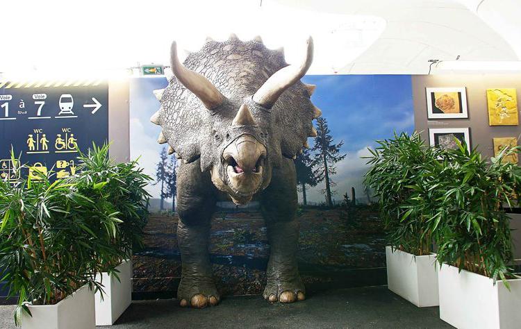 METROPOLE garantiza que el triceratops de tamaño natural cause sensación en París usando la Impresora Massivit 3D