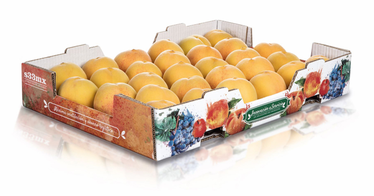 Las soluciones de packaging sostenibles para el sector agrícola centran la propuesta de Hinojosa para Fruit Attraction