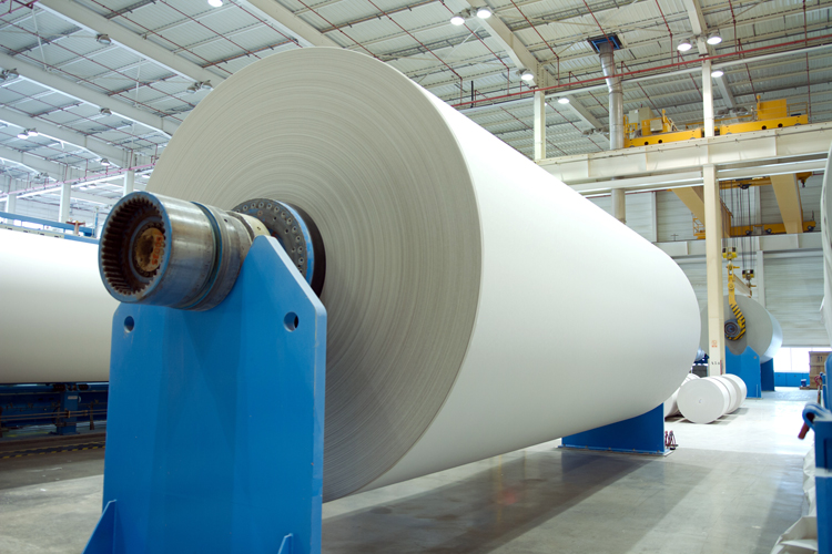 La tasa de reciclaje de la industria papelera española es del 74%, doce puntos por encima de la media europea